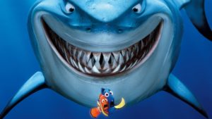 Акулий хрящ для лечения заболеваний суставов